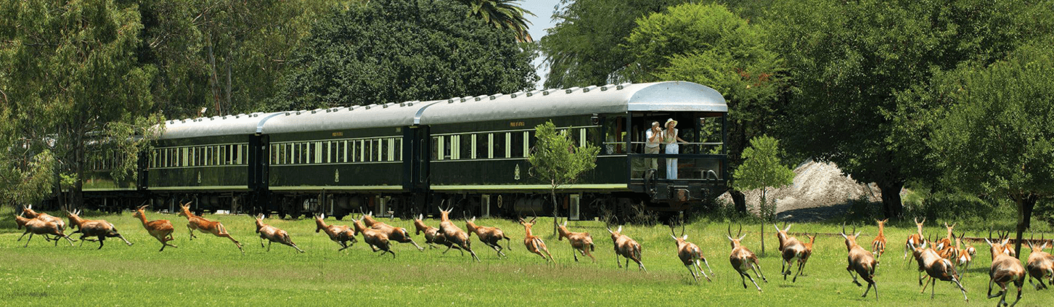 Vacations by Rail in Africa